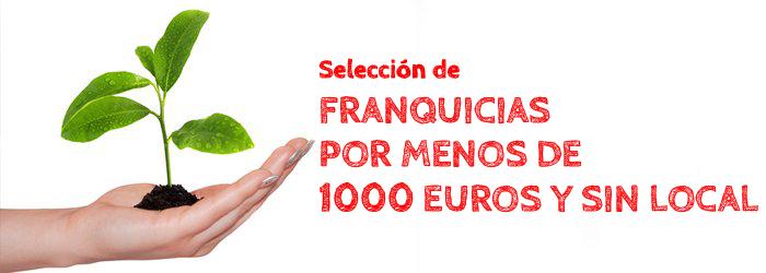 Franquicias baratas por menos de 1000 euros y sin local | Guía + Info