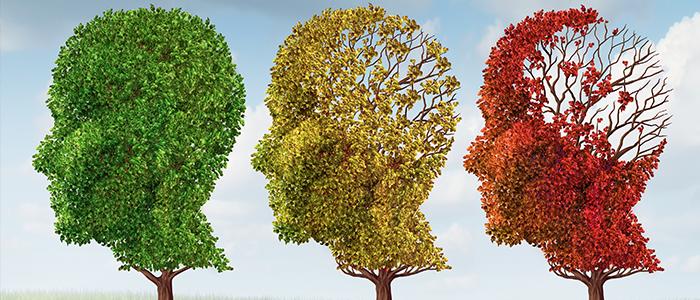 Cómo mejorar la memoria y la concentración | Consejos